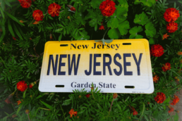new jersey license plate in a green bush